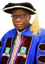 Prof. Olufemi A. Peters